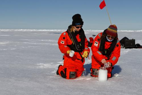 Plastic particles are found in the Arctic